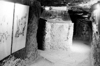 Mamparas y restos óseos en interior de una sala de exhibición