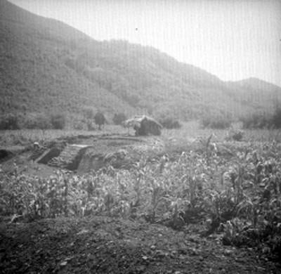 Vista general de edificio B en Cuatlamayán