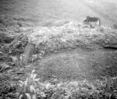 Vista panorámica de montículo antes de su excavación