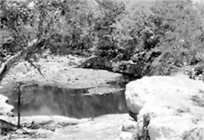 Cenote Xlacah de Dzibilchaltún