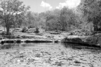 Vista del cenote Xlacah en Dzibilchaltún
