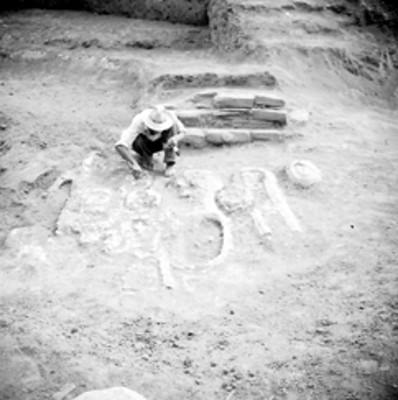 Hombre trabaja en la limpieza de una pieza arqueológica en excavación