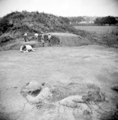 Hombres en una excavación arqueológica