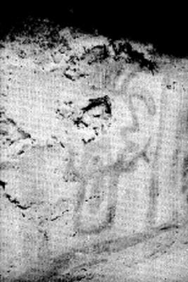 Detalle de muro en la tumba 3