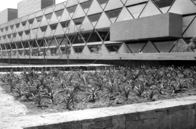 Vista de jardineras ubicadas en la parte Norte de la zona arqueológica de Tlatelolco