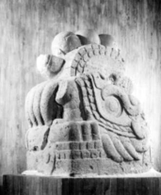 Cabeza de Xiuhcóatl, vista lateral