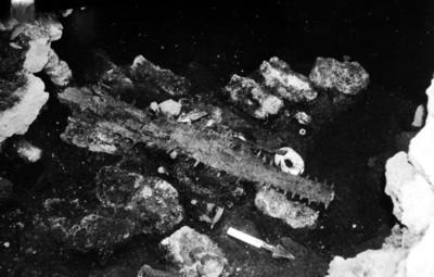 Restos de huesos animales y material de obsidiana durante excavación arqueológica