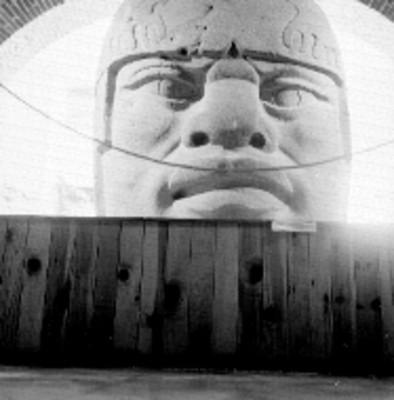 Vista frontal de la cabeza colosal 5 en el museo de Antropología de Xalapa