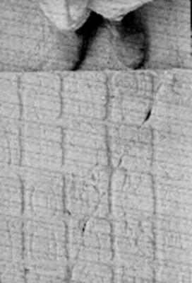 Tablero de El Palacio, detalle de los glifos
