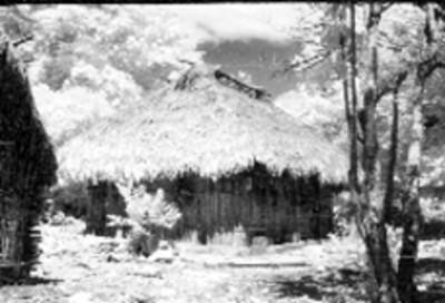 Vista de una casa de madera y palma