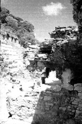 Vista del Templo de las Inscripciones durante su reconstrucción desde el Palacio