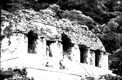 Hombres restauran el último cuerpo del basamento del Templo de las Inscripciones, Palenque