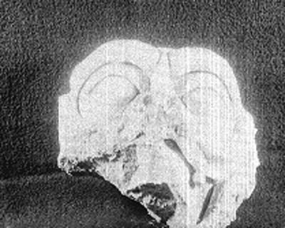 Máscara de estuco fragmentada