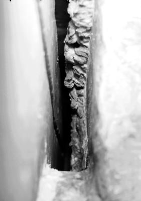 Lápida con relieves escultóricos en la tumba de Pakal, detalle