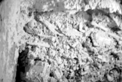 Detalle de fragmentos de huesos humanos hallados en Palenque