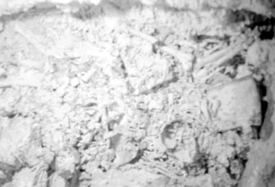 Restos humanos in situ, Palenque