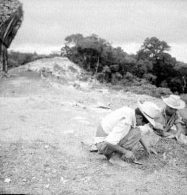 Trabajadores excavan la tierra en la zona arqueológica de Palenque, vista parcial
