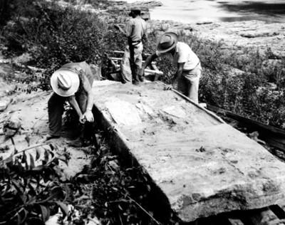 Excavación de la estela 11 de Yaxchilán en las orillas del río Usumacinta, reprografía
