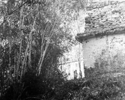 Vista parcial de la estructura 39 y 40 de Yaxchilán, reprografía