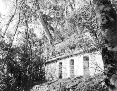 Vista parcial del edificio 40 de Yaxchilán, reprografía