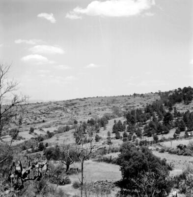 Panorámica del sitio arqueológico