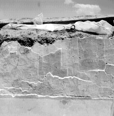 Muro con pintura prehispánica, detalle