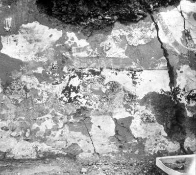 Pintura rupestre con figuras zoomorfas, vista parcial