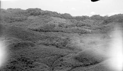 Panorámica de los montículos del Tajín sin explorar