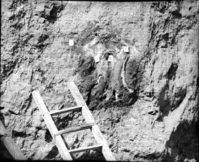 Hallazgo de restos óseos durante los trabajos de excavación en la Pirámide de la Luna