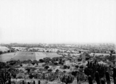 Poblado y paisaje de cactáceas, panorámica
