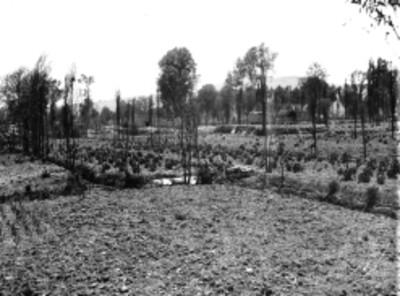 Hombres entre chinampas de Xochimilco