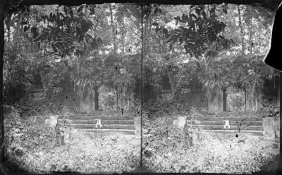 Hombre sentado en los escalones de un basamento cubierto por maleza, retrato