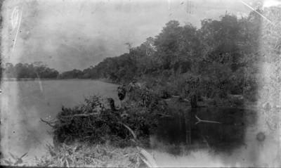 Lago, vista panorámica