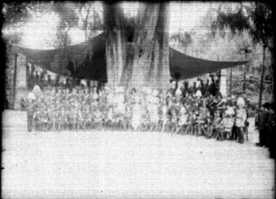 Porfirio Díaz rodeado de militares bajo un árbol, retrato de grupo