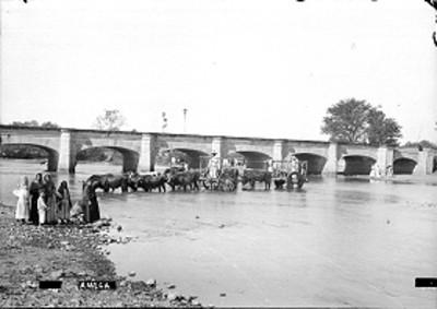 Ganado con carretas cruzan un río