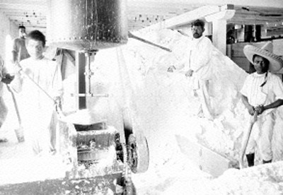 Obreros trabajan en fabrica de cemento, retrato de grupo