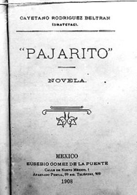 Pajarito, portada de libro