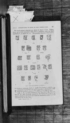 Dibujos glifos mayas, reprografías