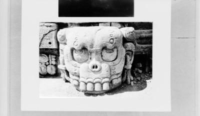 Cráneo prehispánico tallado en piedra, reprografía
