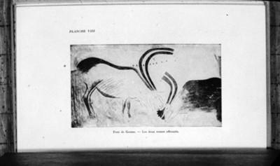 Enfrentamiento de renos, pintura rupestre, reprografía