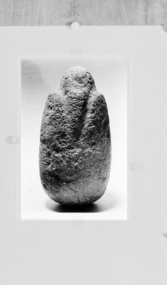 Ecultura antropomorfa, reproducción, reprografía