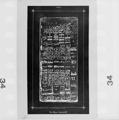 Ilustración de la lamina 73 del Códice Dresde, reprografía