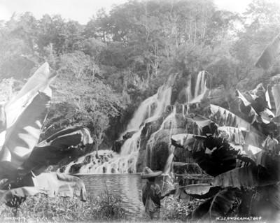Cascada en Tamasopo, paisaje