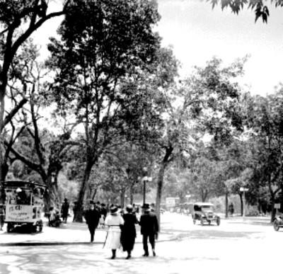 Gente de paseo en el bosque Chapultepec