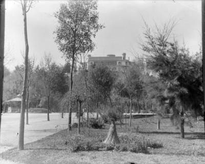 Bosque de Chapultepec, vista parcial