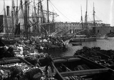 Barcos anclados en un puerto