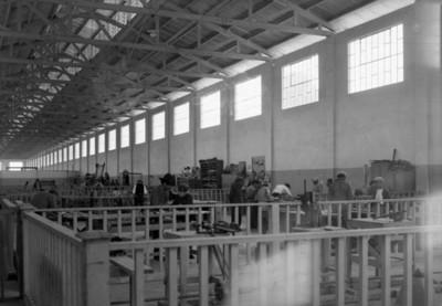 Hombres durante capacitación en un taller de carpintería
