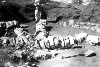 Patio al norte del montículo T.N. Columnas