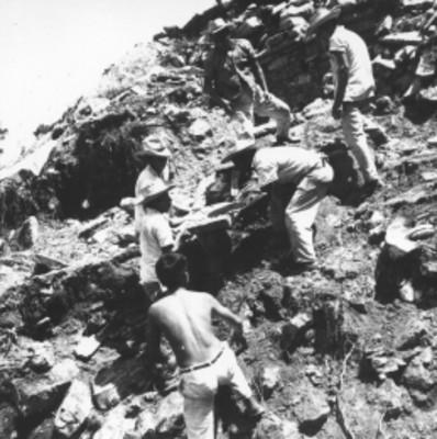 Hombres durante trabajos de desmonte, vista parcial