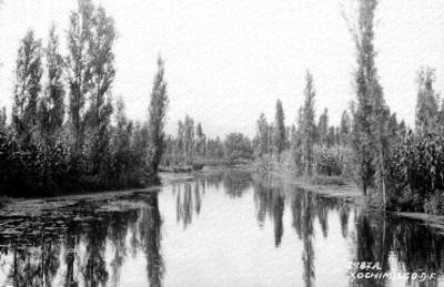 Canal en Xochimilco, vista parcial